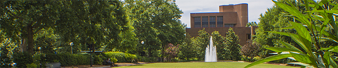 library annex view from herty field